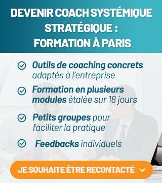 Compétences d' un coach en entreprise en France