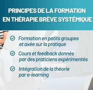 Principes de la formation en thérapie brève systémique